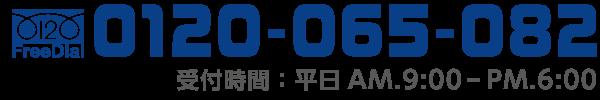 tel-0120-065-082
